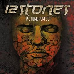 12 Stones : Picture Perfect