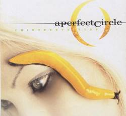 A Perfect Circle : Thirteenth Step