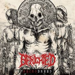 Benighted (FRA) : Necrobreed