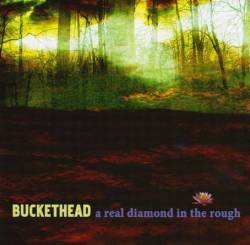 Buckethead : A Real Diamond in the Rough