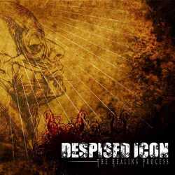 Despised Icon : The Healing Process
