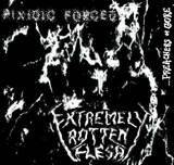Extremely Rotten Flesh (PL) : ...Preachers of Gore - split with PIXIDIC FORCED