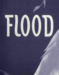 logo Flood (POR)