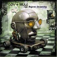 Gov't Mule : Life Before Insanity