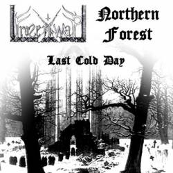 Northern Forest : Last Cold Day