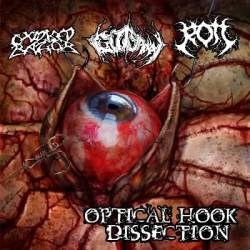 Optical Hook Dissection
