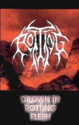 Drown in Rotting Flesh