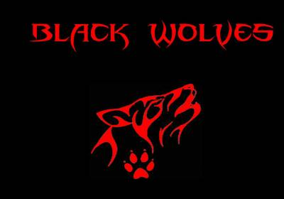 logo Black Wolves