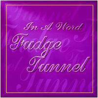 Fudge Tunnel : In a Word