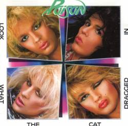 Poison (USA) : Look What the Cat Dragged in