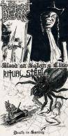 Ritual Steel : Blood on Satan's Claw - Death in Spring