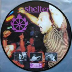 Shelter : The Power of Positive Thinking