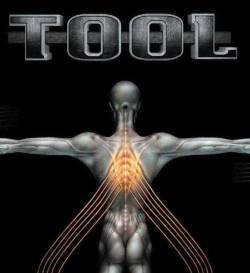 Tool : Salival
